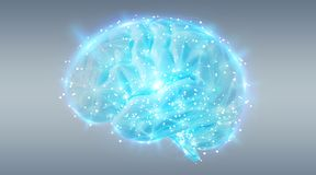 Ψηφιακή τρισδιάστατη προβολή μιας ανθρώπινης τρισδιάστατης απόδοσης εγκεφάλου ελεύθερη απεικόνιση δικαιώματος