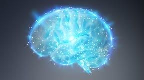 Ψηφιακή τρισδιάστατη προβολή μιας ανθρώπινης τρισδιάστατης απόδοσης εγκεφάλου απεικόνιση αποθεμάτων