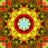 Ψηφιακό αφηρημένο ζωηρόχρωμο Floral Mandala υπόβαθρο ζωγραφικής απεικόνιση αποθεμάτων