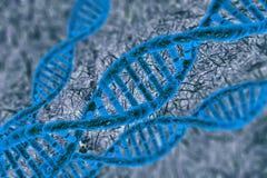 Ψηφιακό κύτταρο DNA απεικόνισης Στοκ Φωτογραφία