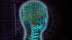 Ψηφιακό σύνθετο ενός ανθρώπινου εγκεφάλου ελεύθερη απεικόνιση δικαιώματος