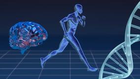 Ψηφιακό σύνθετο του ατόμου, του ανθρώπινων εγκεφάλου και του DNA διανυσματική απεικόνιση