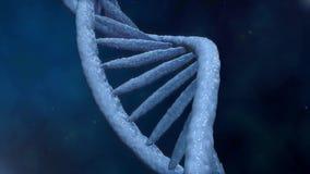 ψηφιακό DNA Τα περιστρεφόμενα σκέλη DNA συγκεντρώνονται από τα μεμονωμένα στοιχεία γενετικός επιστημονικό&sigma φιλμ μικρού μήκους