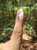 Ψηφισμένος στην εκλογή στοκ εικόνες με δικαίωμα ελεύθερης χρήσης