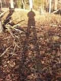 Ψηλή σκιά Στοκ Εικόνα
