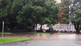 Ψιλή βροχή περπατώντας στο πανεπιστήμιο της Νότιας Νέας Ουαλίας απόθεμα βίντεο