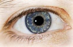 ψυχή ματιών στο παράθυρο Στοκ Φωτογραφία