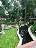 Ψυχαγωγικά πάρκα που δίνει το οξυγόνο στοκ φωτογραφία με δικαίωμα ελεύθερης χρήσης