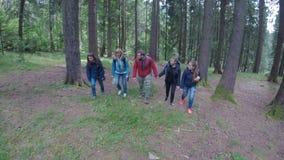Ψυχρή ομάδα νέων φίλων τουριστών που πραγματοποιούν οδοιπορικό ένα ίχνος βουνών που περπατά μέσω του δάσους - απόθεμα βίντεο