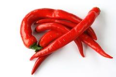 ψυχρό κόκκινο πιπεριών στοκ εικόνες με δικαίωμα ελεύθερης χρήσης