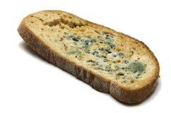 ψωμί απηρχαιωμένο Στοκ φωτογραφίες με δικαίωμα ελεύθερης χρήσης
