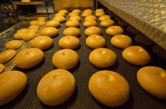 Ψωμί αρτοποιών Εγκαταστάσεις αρτοποιείων Παραγωγή του ψωμιού Φρέσκο άσπρο ψωμί από το φούρνο Στοκ Εικόνες