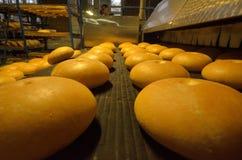 Ψωμί αρτοποιών Εγκαταστάσεις αρτοποιείων Παραγωγή του ψωμιού Φρέσκο άσπρο ψωμί από το φούρνο Στοκ εικόνες με δικαίωμα ελεύθερης χρήσης