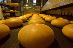 Ψωμί αρτοποιών Εγκαταστάσεις αρτοποιείων Παραγωγή του ψωμιού Φρέσκο άσπρο ψωμί από το φούρνο Στοκ φωτογραφίες με δικαίωμα ελεύθερης χρήσης