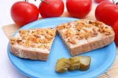 Ψωμί με το στάλαγμα και τα κρεμμύδια στοκ φωτογραφία με δικαίωμα ελεύθερης χρήσης