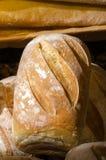 Ψωμί στο Βανκούβερ Στοκ εικόνες με δικαίωμα ελεύθερης χρήσης
