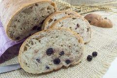 Ψωμί φρούτων με το aronia που τεμαχίζεται σε ένα ξύλινο πιάτο με το ξηρό aron Στοκ Εικόνα