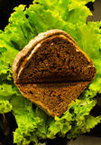 Ψωμί Brekfast με την πράσινη σαλάτα Στοκ Εικόνες