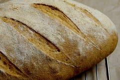 Ψωμί Kamut επάνω στενό στοκ φωτογραφίες