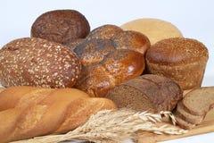 ψωμιά διάφορα Στοκ Εικόνα