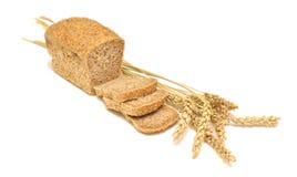 Ψωμιά και σίτος σιταριού Στοκ Εικόνες