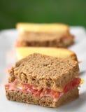 ψωμιού monsieur ζαμπόν τυριών croque ψημένο στη σχάρα Στοκ εικόνες με δικαίωμα ελεύθερης χρήσης