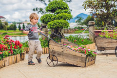Ωθώντας καροτσάκι ροδών παιδιών στον κήπο γλυκό λίγο μικρό παιδί Στοκ φωτογραφία με δικαίωμα ελεύθερης χρήσης