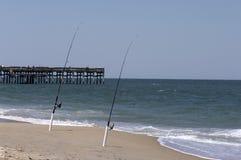 ωκεάνια άμμος ψαριών στοκ εικόνες με δικαίωμα ελεύθερης χρήσης