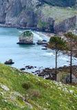 Ωκεάνια άποψη άνοιξη ακτών Στοκ Εικόνες