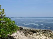 Ωκεάνια άποψη από την παραλία, Maafushi, Μαλδίβες Στοκ φωτογραφίες με δικαίωμα ελεύθερης χρήσης