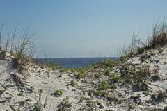Ωκεάνια άποψη από τους αμμόλοφους άμμου Στοκ Εικόνα