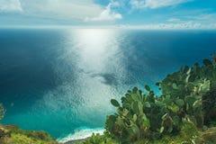 Ωκεάνια άποψη Στοκ Εικόνα