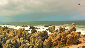 ωκεάνια κύματα βράχων φιλμ μικρού μήκους
