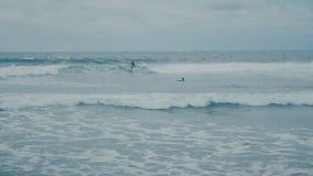 Ωκεάνια κύματα γύρων Surfer στην παραλία στο Μπαλί σε σε αργή κίνηση απόθεμα βίντεο