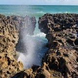ωκεάνια κύματα κυμάτων πρώτου πλάνου εστίασης Στοκ εικόνα με δικαίωμα ελεύθερης χρήσης