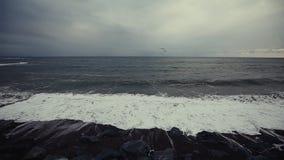 Ωκεάνια κύματα που συντρίβουν στη δύσκολη ακτή φιλμ μικρού μήκους