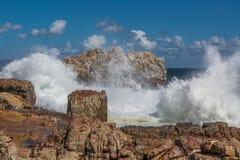 Ωκεάνια φρεσκάδα Στοκ Εικόνες