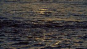 Ωκεάνια όψη στο ηλιοβασίλεμα φιλμ μικρού μήκους