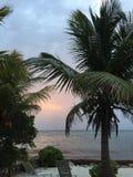 Ωκεάνιες διακοπές άποψης πρωινού Στοκ Εικόνες