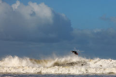 Ωκεάνιο κύμα σερφ Στοκ φωτογραφία με δικαίωμα ελεύθερης χρήσης