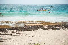 Ωκεάνιο πλαστικό στην ακτή στοκ εικόνα