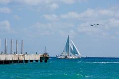 ωκεάνιο sailboat Στοκ Εικόνες