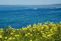 ωκεανός απέραντος Στοκ φωτογραφία με δικαίωμα ελεύθερης χρήσης