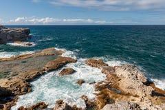 Ωκεανός και βράχοι των Μπαρμπάντος δίπλα στη ζωική σπηλιά λουλουδιών Καραϊβικό νησί θάλασσας Στοκ εικόνα με δικαίωμα ελεύθερης χρήσης