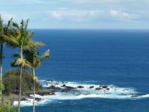 Ωκεανός και φοίνικες στοκ φωτογραφία με δικαίωμα ελεύθερης χρήσης