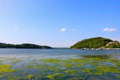 ωκεανός Στοκ εικόνα με δικαίωμα ελεύθερης χρήσης