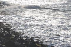 ωκεανός Στοκ Εικόνες