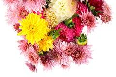 Ωραία ανθοδέσμη των λουλουδιών φθινοπώρου που απομονώνονται στο λευκό στοκ φωτογραφία με δικαίωμα ελεύθερης χρήσης