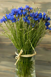 Ωραία ηλιόλουστη ανθοδέσμη bluebottles Στοκ Εικόνες