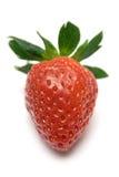 ωριμασμένη φράουλα στοκ φωτογραφίες με δικαίωμα ελεύθερης χρήσης